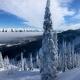 Fernie Ski Hill - Tough Country Communications